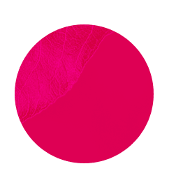 badge_fresa